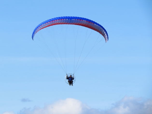 Paraglider Bird in Washington County.