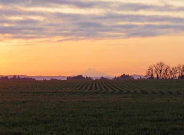 Sunrise in Washington County.