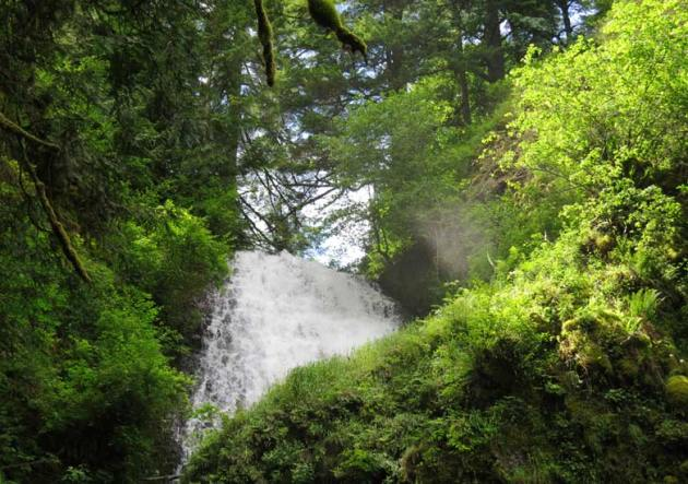 Upper Latourell Falls, Columbia River Gorge