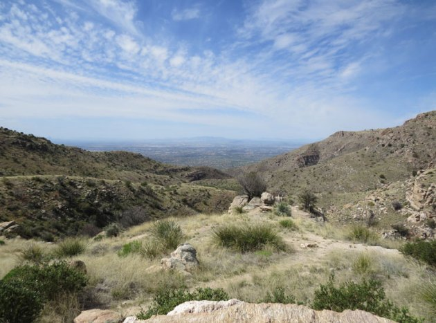 View back towards Tucson from Mt. Lemmon.